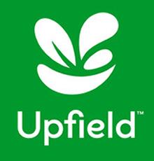 upfield-guo